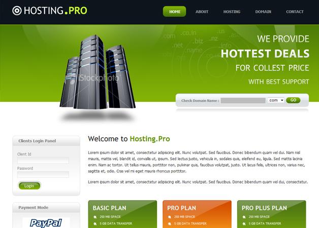 Hosting Provider Template