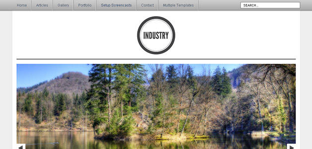 WP Industry Theme
